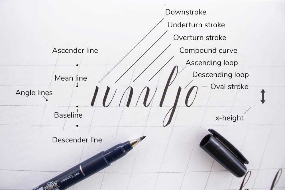 The 7 basic calligraphy strokes + terminology - Lettering Daily