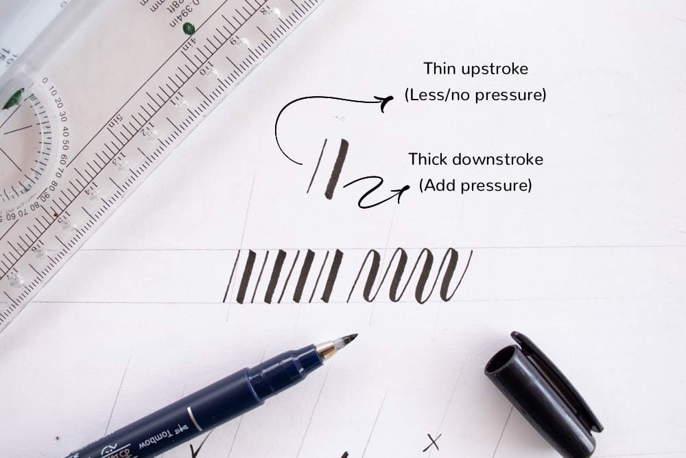 Thick and thin calligraphy strokes - Lettering Daily