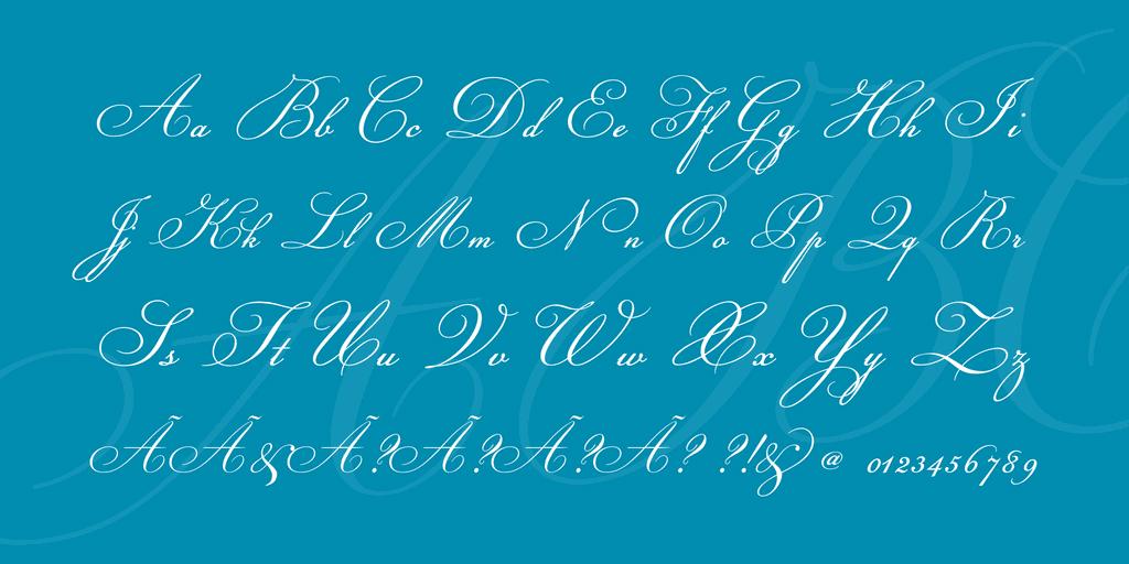 champignon-font-cover